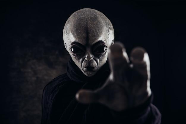 Criatura alienígena tem uma mensagem para os seres humanos. humanóide amável cinzento de uma outra série do retrato do planeta.