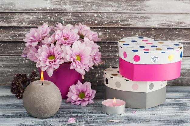 Crisântemo rosa em vaso de concreto