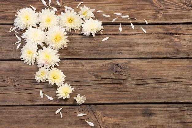 Crisântemos brancos em madeira velha