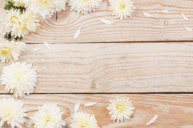 Crisântemos brancos na madeira