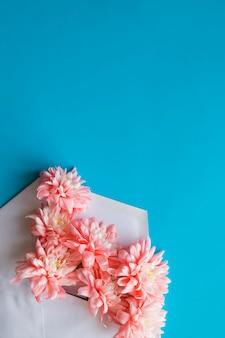 Crisântemos rosa. apartamento deitado no fundo azul dos doces. cartão de felicitações