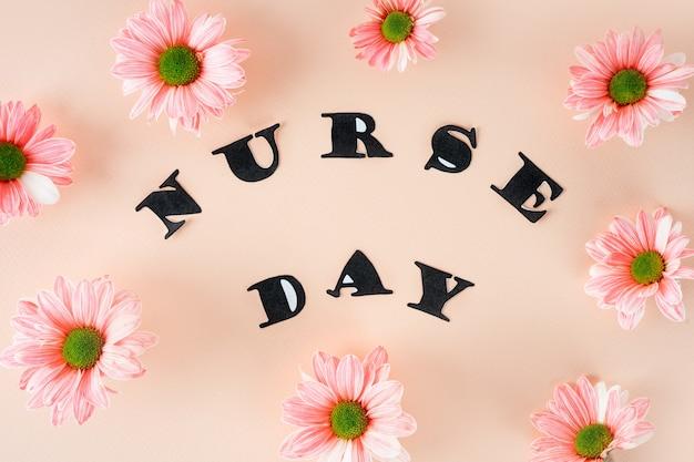 Crisântemos rosa em um fundo rosa pastel e letras elegantes com vista superior e floral em close-up