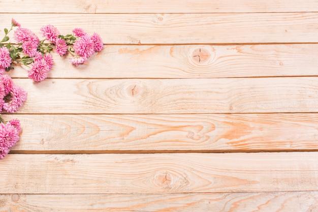 Crisântemos rosa na madeira