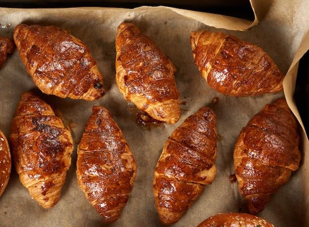 Croissants assados em uma assadeira em papel vegetal, deliciosos e apetitosos pastéis, vista de cima