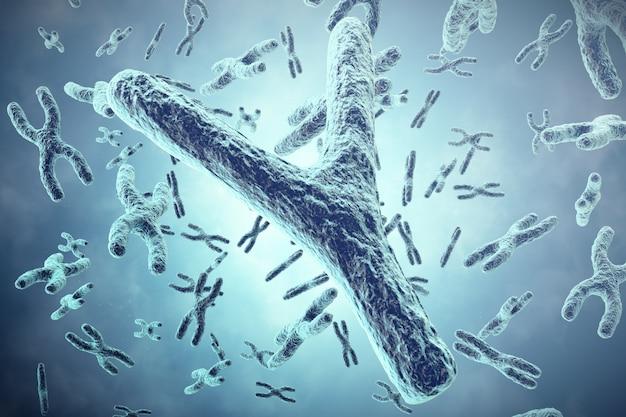 Cromossomo y em primeiro plano, um conceito científico. ilustração 3d