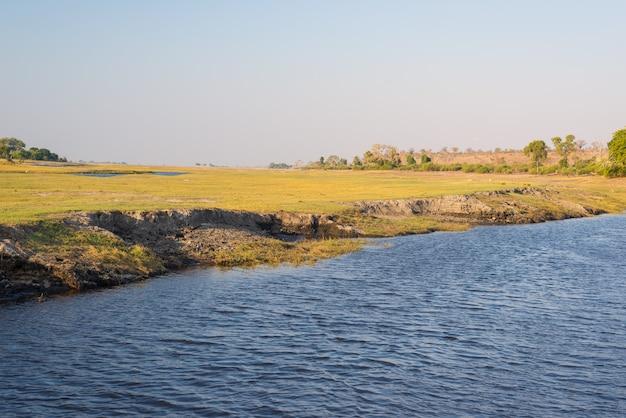 Cruzeiro de barco e safári de vida selvagem no rio chobe, botswana