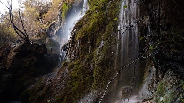 Cuervo river spring.