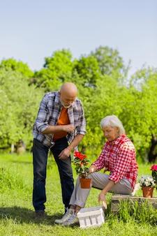 Cuidado com as flores. marido e mulher aposentados com aparência de gosma curtindo o tempo enquanto cuidam das flores