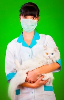 Cuidados de saúde animal em uma parede verde