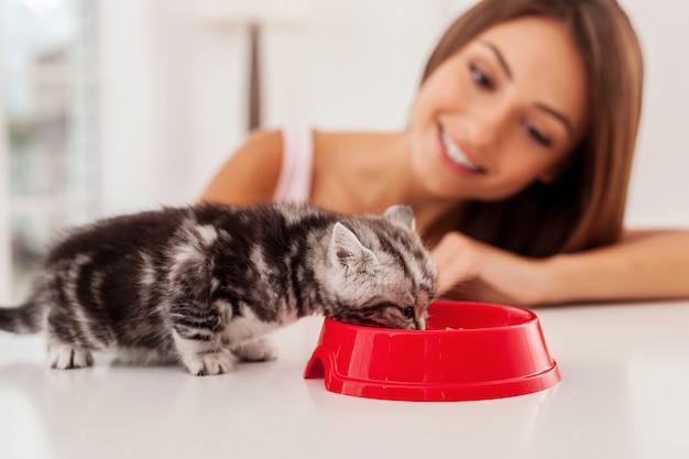 Cuidando bem de seu animal de estimação. gatinho comendo comida da tigela enquanto bela jovem olhando para ele e sorrindo