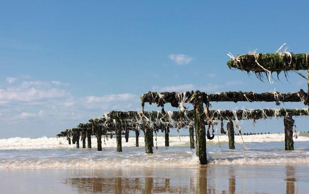 Cultivo de mexilhão na costa de opala no norte da frança
