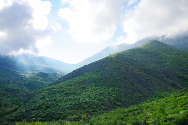 Cumes de montanhas na floresta, série de paisagens