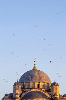 Cúpula de uma mesquita voando com pássaros no céu em istambul, turquia