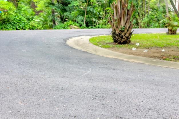 Curva do caminho da estrada para a floresta