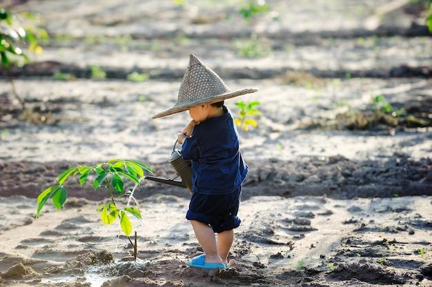 Cute, criança asian, aguando, árvore jovem