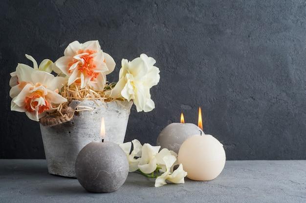 Daffodils no vaso de flores no fundo de concreto escuro