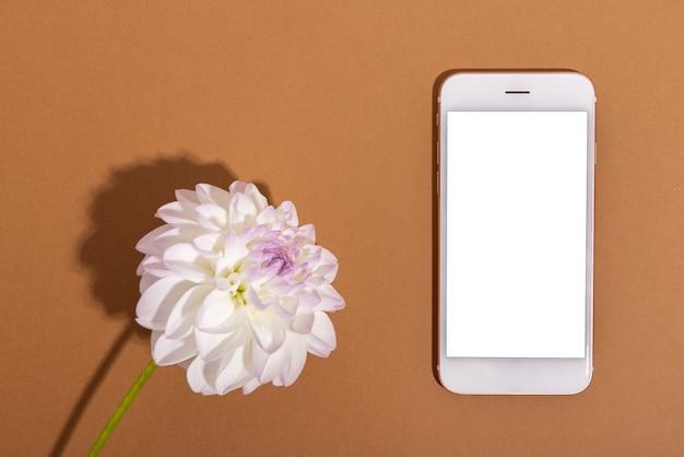 Dália ternura branca e telefone celular com tela branca close-up tiro fundo floral suave