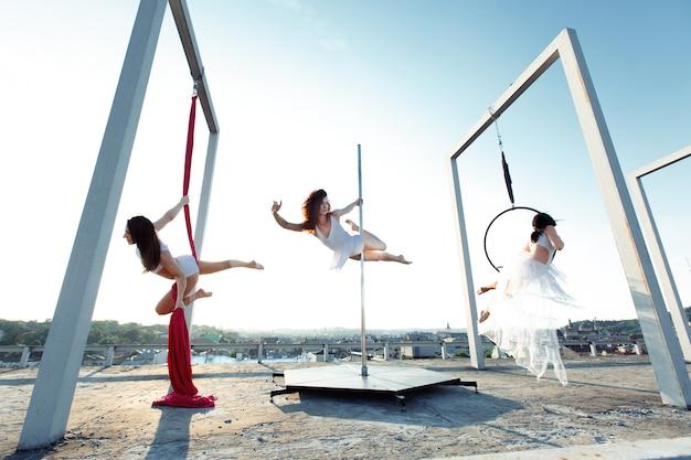 Dançarinos atléticos que executam dança aérea e de poste no telhado