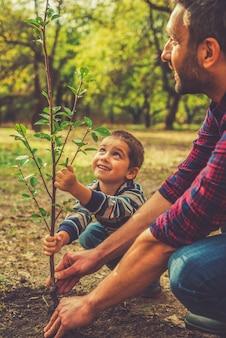 Dando uma nova vida. menino alegre ajudando o pai a plantar a árvore enquanto trabalham juntos no jardim