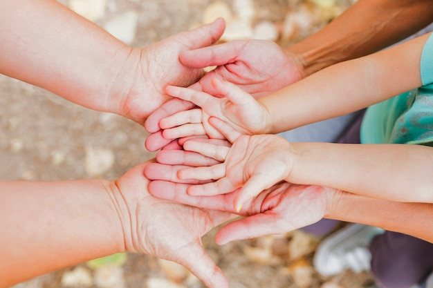 Das mãos acima da família