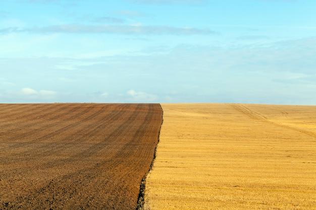 De um campo de cultivo de trigo, metade do qual é arado para o inverno e preparado para o plantio de uma nova safra. paisagem de verão com céu azul com nuvens