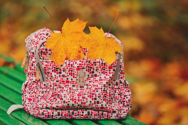 De volta à escola. folhas de outono mochila escolar vermelha em pé no banco verde. duas folhas de bordo amarelas