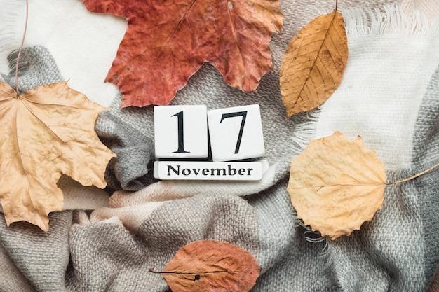 Décimo sétimo dia do mês de outono calendário de novembro.