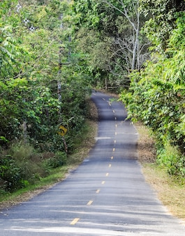 Declive estrada