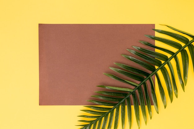 Decoração botânica e cartão marrom vazio