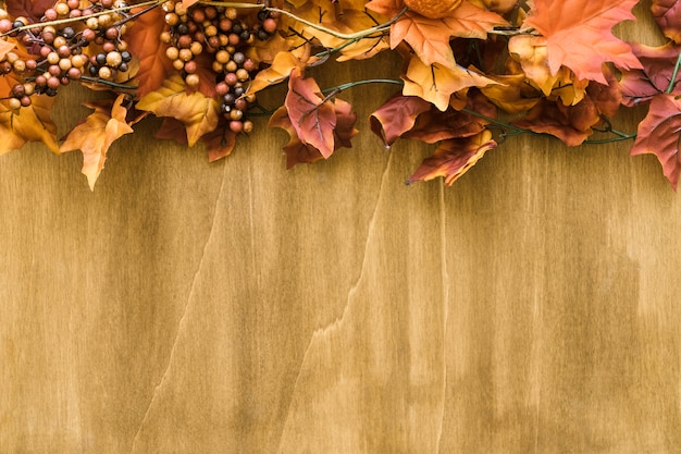 Decoração de folhas de outono