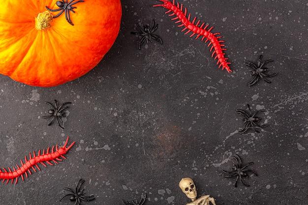 Decoração de halloween: abóbora, esqueleto, aranhas, minhocas em um fundo escuro