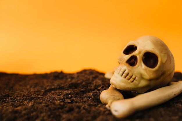 Decoração de halloween com crânio na sujeira