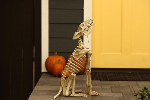 Decoração de halloween com esqueletos e abóboras. esqueleto de halloween de um cachorro assustador.