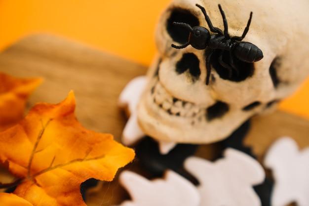 Decoração de halloween com formiga no crânio