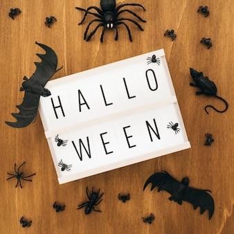 Decoração de halloween com sinal, morcegos e aranha