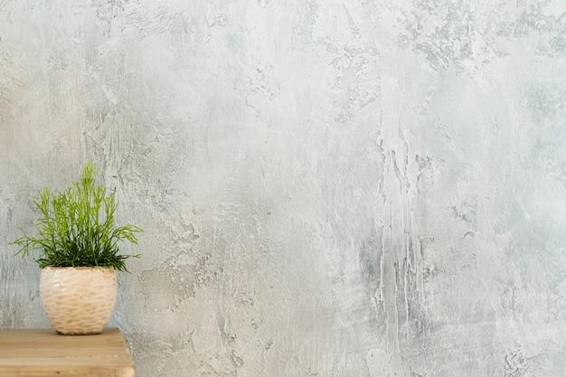 Decoração de plantas de interior. conceito de design. planta de casa única na cômoda.