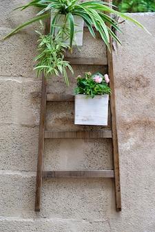 Decoração de plantas na parede da cidade velha de marbella