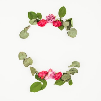 Decoração de rosas e folhas no pano de fundo branco