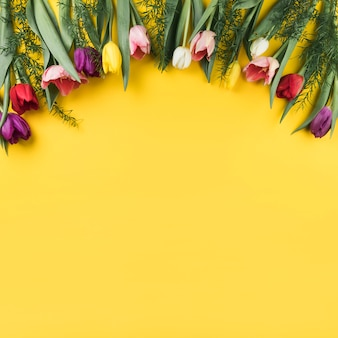 Decoração de tulipas coloridas em fundo amarelo com espaço para escrever o texto