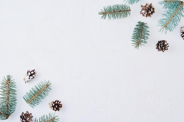 Decoração feita com galhos de pinheiros, pinhas e frutas secas no fundo branco