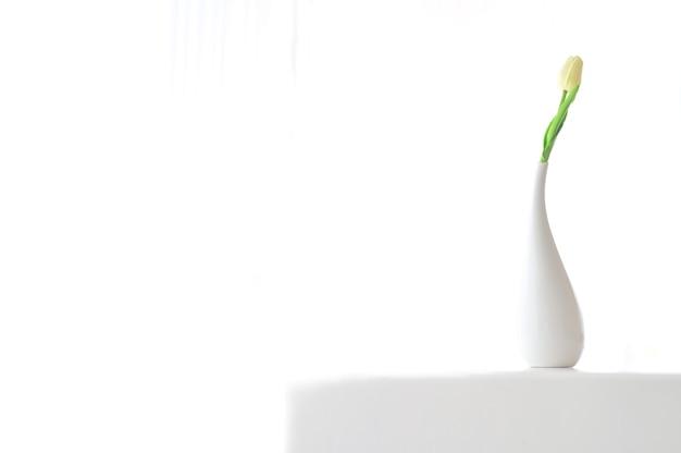 Decoração floral interior para casa. composição branca suave floral mínima em um vaso no fundo da parede branca.