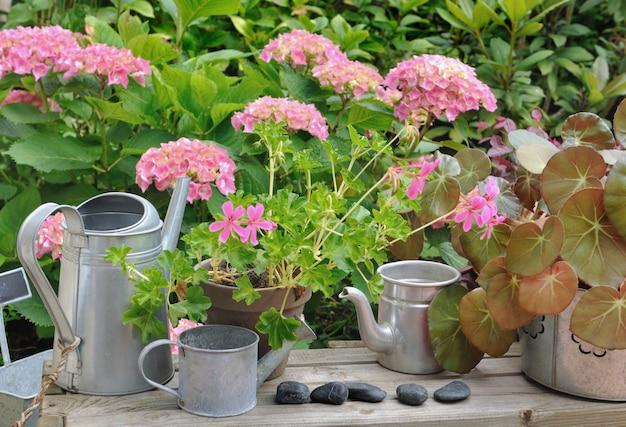 Decoração floral no jardim