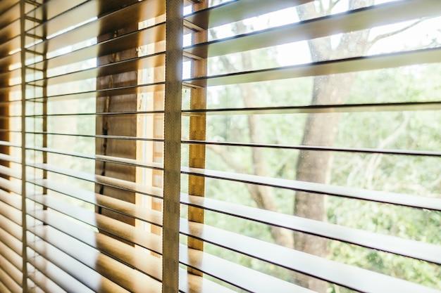 Decoração interior opinião do close up cegos