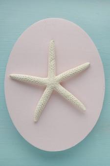 Decoração marítima. estrela do mar seca branca em um delicadamente azul.