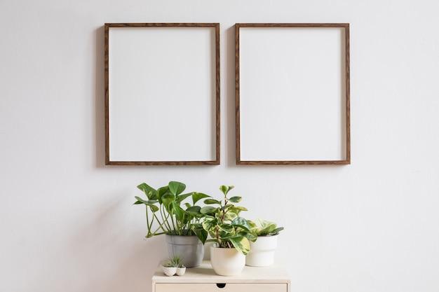 Decoração minimalista do interior com duas molduras de madeira marrom na prateleira branca com livros, bela planta em um vaso elegante e acessórios para casa. parede branca.