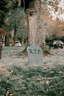 Decorações assustadoras assustadoras da casa do dia das bruxas