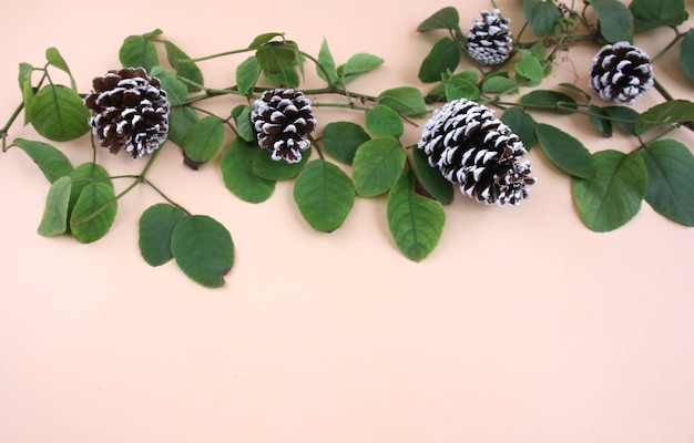 Decorações do natal e videiras e cones secados do pinho em uma luz - fundo amarelo.