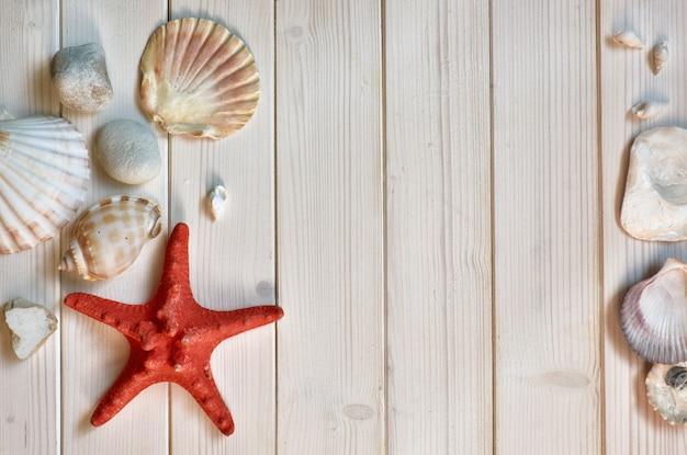 Decorações marítimas - pedras, conchas e nós - em pranchas de madeira claras, espaço