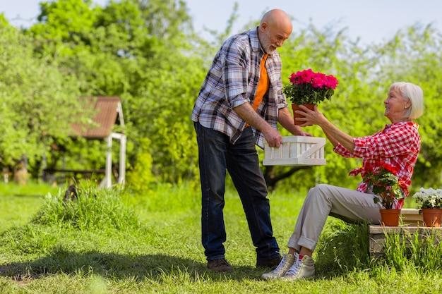 Decorar território. marido e mulher aposentados e bonitos decorando seu território com vasos de flores