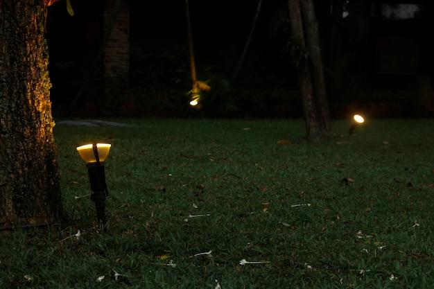 Decore o jardim com luzes à noite.